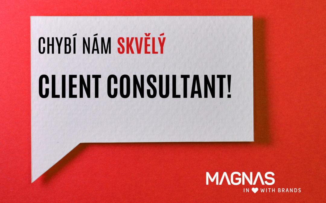 Hledáme nového kolegu. Client Consultant